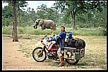 "1991_Zimbabwe_close to the border to Zambia_my ""3 elephants""-photo: elephant, motorbike, Jochen_what an experience, what a feeling ! _my motorcycle-trip 1990-91 Nairobi-Capetown_Jochen A. Hübener"